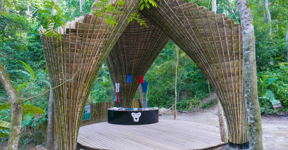 170. Construieste cu bambus