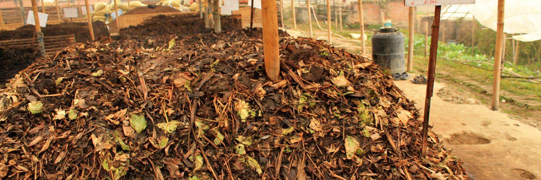 205. Creeaza compost din deseuri organice