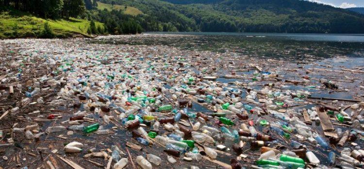 359. Cand observi o sursa de poluare neobisnuita anunta agentia locala de mediu